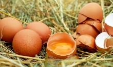 البيض: علاج فعال وسريع لسوء التغذية عند الأطفال