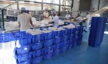مؤسسات خيرية قطرية تضمّد جراح السوريين منذ 6 أعوام