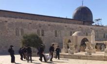 الأردن يقدم احتجاجًا دبلوماسيًا على انتهاك الاحتلال للأقصى