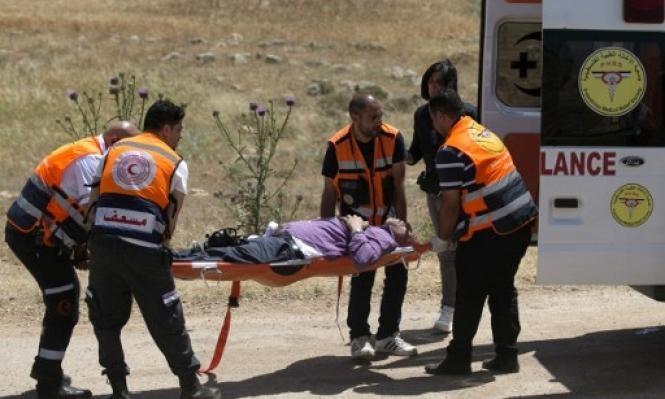 مستوطن يطعن فلسطينيًا وآخرون يقطعون أشجار الزيتون