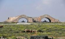 البيت الأبيض: الأسد استجاب للتحذير من السلاح الكيماوي