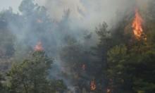 6 أشهر من الحرائق في المغرب: النيران أكلت 397 هكتارا