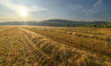 حالة الطقس: أجواء شديدة الحرارة وتحذيرات من أشعة الشمس المباشرة