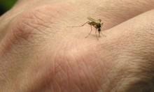 الملاريا: الجينوم القادر على مقاومة جهاز المناعة البشري
