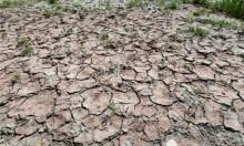 """إيطاليا على حافة الجفاف... ودعوات لإعلان """"حالة الكارثة الطبيعية"""""""