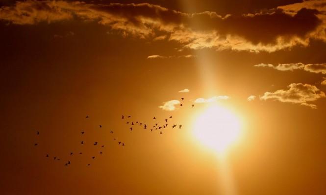 """باحثون: """"تعتيم الشمس ومراوح عملاقة لتبريد كوكب  الأرض"""""""
