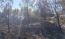 اندلاع حريق هائل قرب عسفيا