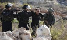 الاحتلال يعتقل 20 فلسطينيا بالضفة الغربية