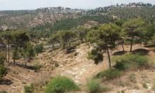"""الناصرة: تحذيرات من مخطط يحول حي شنلر إلى """"غيتو"""""""