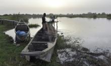بوكو حرام تقتل 31 صيادا في نيجيريا