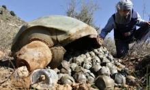لتجاوز القيود الدولية: إسرائيل تطور مدفعا لإطلاق القذائف العنقودية