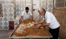 الفطر بديل للحوم جراء الحصار بغوطة دمشق الشرقية