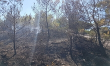حريق هائل في منطقة مجيدو