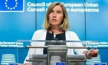 الاتحاد الأوروبي يدعو لحل الأزمة مع ك. الشمالية سلميا
