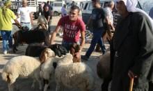 عيد الأضحى في غزة مختلف هذا العام