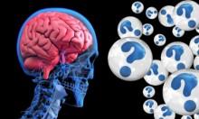 دراسة: كثرة الطعام قد تضعف الذاكرة