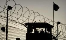 5 أسرى في سجن مجيدو رهائن العزل الانفرادي