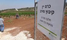 دعوات بالأردن لمقاطعة المنتجات الزراعية الإسرائيلية