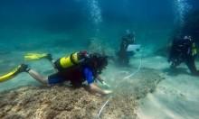 تونس: العثور على مدينة أغرقها تسونامي قبل 1600 عام