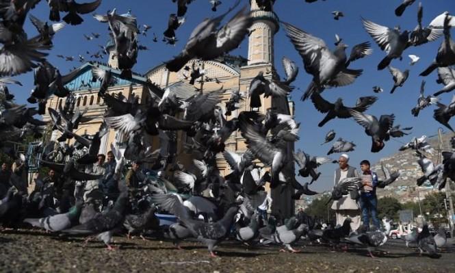 العيد في أفغانستان