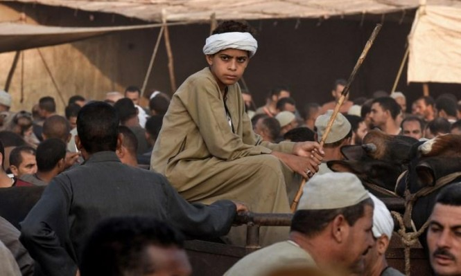 أجواء العيد في صعيد مصر