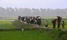 توقعات أممية بفرار نحو 300 ألف من الروهينغا إلى بنغلادش