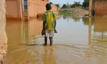 النيجر: مصرع 50 شخصا ونزوح 120 ألفا