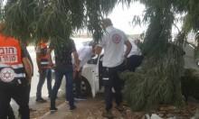 باقة الغربية: 4 إصابات في حادث طرق
