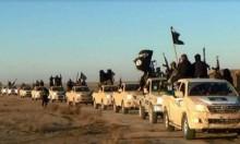 """مذكرات باعتقال 800 عنصر من """"داعش"""" في ليبيا"""