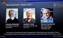 هندرسون ويواكيم ودوبوشيه يفوزون بجائزة نوبل للكيمياء