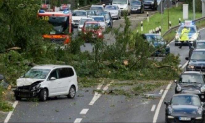 مصرع 7 أشخاص إثر سقوط أشجار بسبب عاصفة قوية في ألمانيا