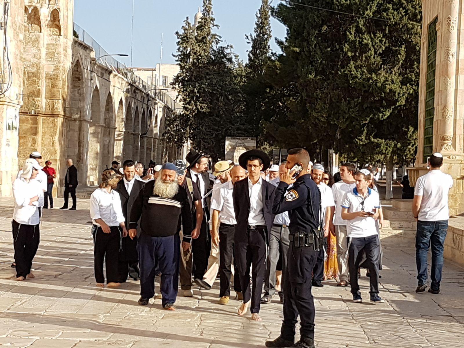 مئات المستوطنين يقتحمون الأقصى والاحتلال يستنفر بالقدس القديمة