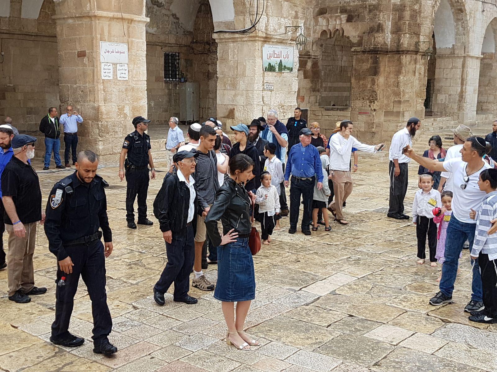 """المستوطنون يواصلون اقتحام الأقصى بـ""""العرش"""" والاحتلال يحجبه عن الفلسطينيين"""