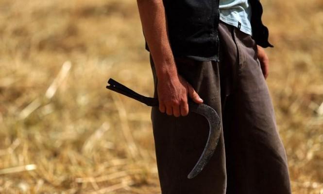 """تجار الحرب: كيف تعاون النظام السوري مع """"داعش"""" لتوفير القمح؟"""