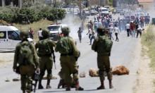 تقرير: 23 شهيدا ومقتل 14 إسرائيليا منذ مطلع العام