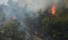 خسائر حرائق الغابات في كاليفورنيا تصل إلى مليار دولار