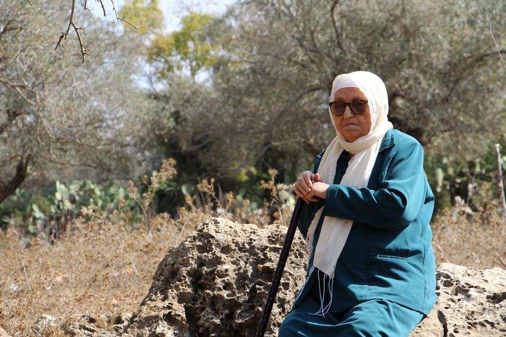 أم الزينات وخبيزة المهجرتين: شوق وحنين للأرض والزيتون
