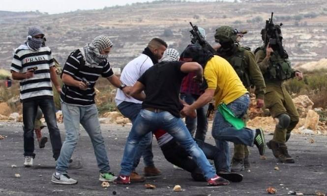 الاحتلال يختطف شابا من الرام ويعرقل قطاف الزيتون بكفرقدوم