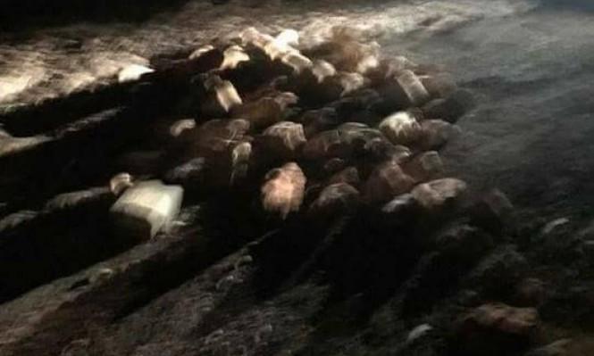 طرعان: إغلاق شارع العين بالحجارة