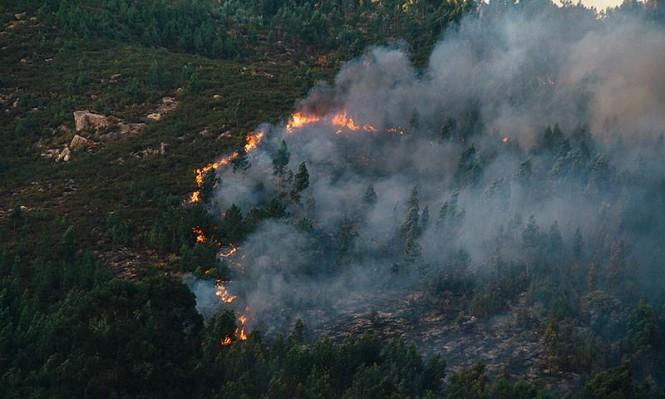 حريق في أحراش قرية صطاف المهجرة قرب القدس