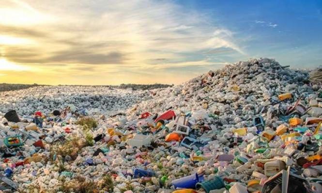 البلاستيك: وجبات شهية للشعاب المرجانيّة