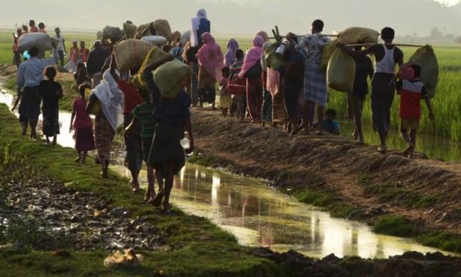 الأمم المتحدة: 3 ملايين محرومون من الجنسية بالعالم