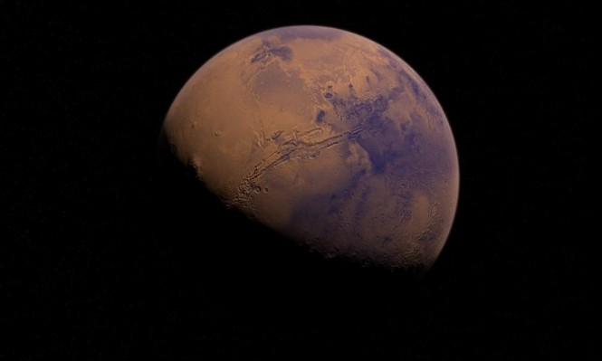 كائنات يمكنها تحمل الظروف القاسية على سطح المريخ