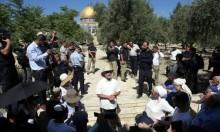 140 مستوطنا يقتحمون الأقصى بحراسة شرطة الاحتلال