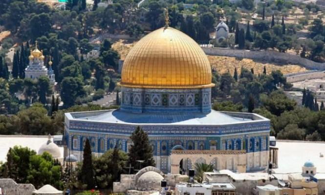 نبض الشبكة: من القدس إلى أبو ديس