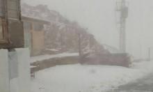 فيديو: الثلوج تتساقط في جبل الشيخ