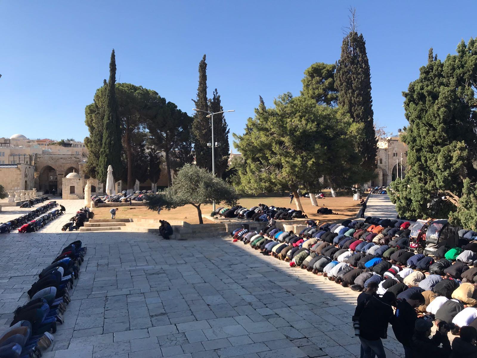 مظاهرات ومواجهات في كل الأراضي الفلسطينية تصديًا لإعلان ترامب