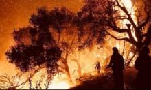 """""""توماس"""": خامس أكبر الحرائق بتاريخ كاليفورنيا"""