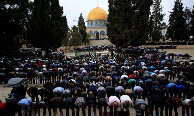 مفتي الديار الفلسطينية: قرار ترامب لن تغير من الواقع شيئًا