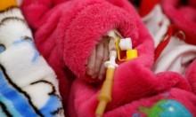 الفاو: خوف من مجاعة بسبب الحروب والنزاعات